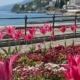 Spring in Croatia